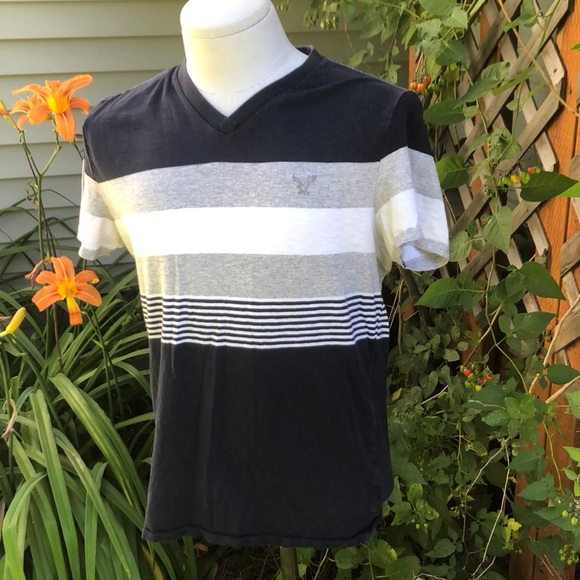 American Eagle Outfitters Other - American Eagle Outfitters v-neck Tee Shirt.  Med.